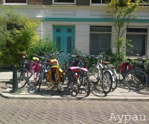 The Hague bicycles