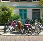 foto fietsen den haag1